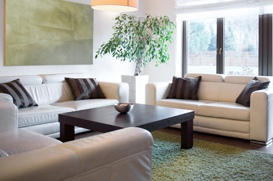Relocation Support | Furniture Rental